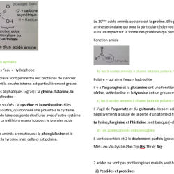 Exemple Bio (chap1)