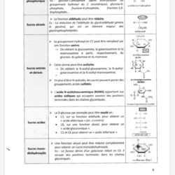 exemple structure cours