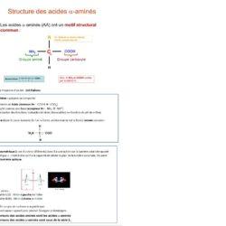 photo cours biomolécule acide aminé
