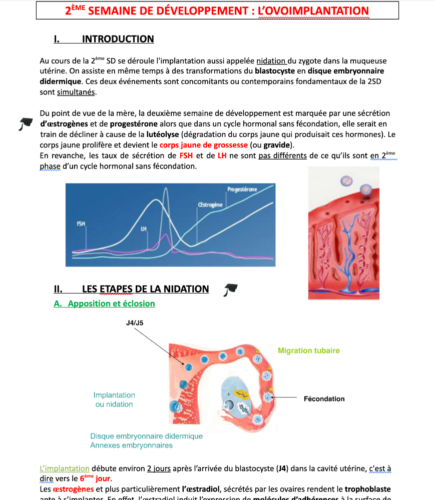 cours embryo